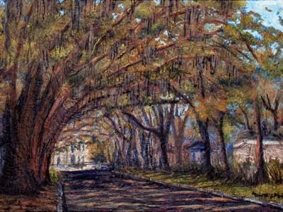 Magnolia Avenue