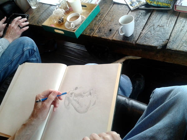 Drawing session at the Hyppo, Sunday January 6th