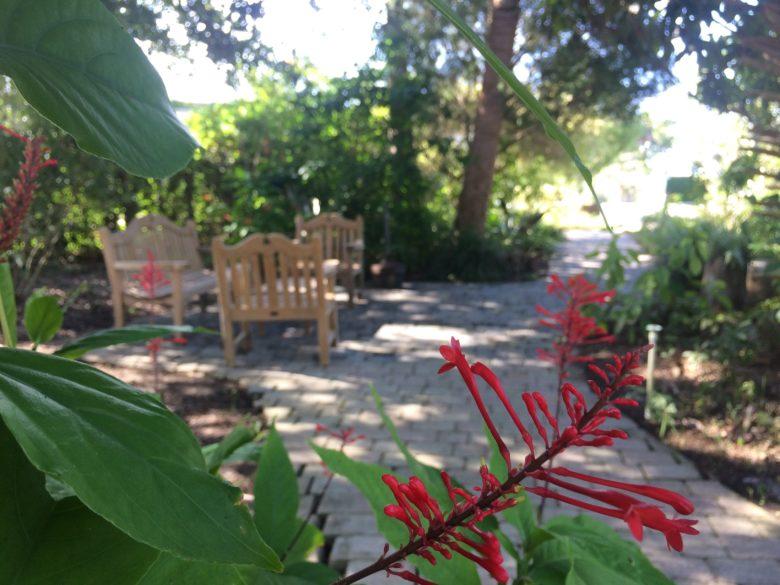 Millen Memorial Garden for Sunday, October 16